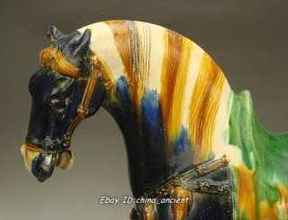 Rare Chinese Tang sancai Blove Glaze Horse Statue