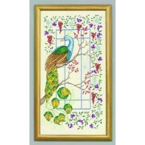 Charlotte and the Peacock   Cross Stitch Kit: Arts, Crafts