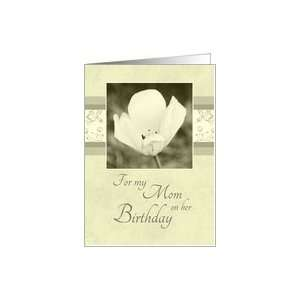 Happy Birthday Mom from Son   White Flower Card Health