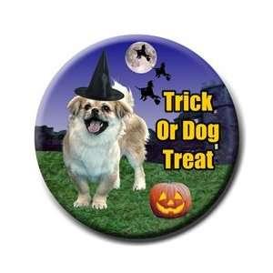 Tibetan Spaniel Halloween Pin Badge Button