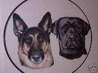 Chris Hoy   Wildlife Artist, Collectible Dog Portrait
