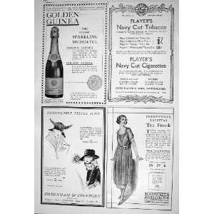 1920 GOLDEN GUINEA CHAMPAGNE CIGARETTES DEBENHAM BIRDS