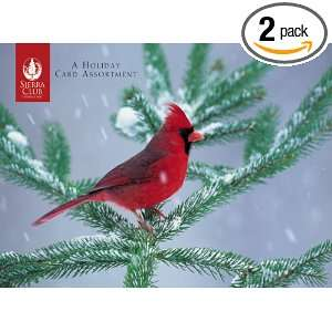 Pomegranate Backyard Birds In Winter Boxed Notes (Pack of