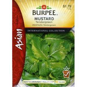 69638 Asian   Mustard Tendergreen Seed Packet: Patio, Lawn & Garden