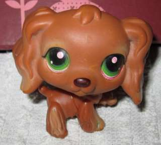 Chocolate Brown Cocker Spaniel Littlest Pet Shop Dog Green Eyes RARE