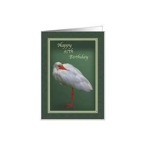 Birthday, 97th, White Ibis Bird Card Toys & Games