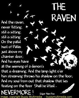 The Raven by Edgar Allan Poe, Raven T Shirt, graphic