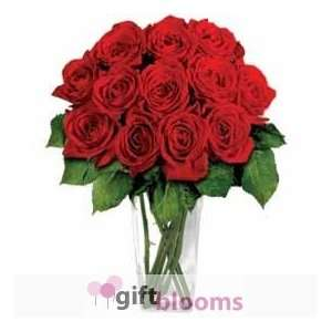 12 Red Long Stem Roses Grocery & Gourmet Food