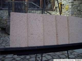 5x Schamottsteine Schamottstein Schamotte 400/ 300 / 20