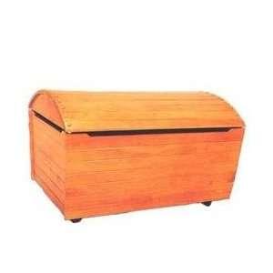 Treasure Box Toy Chest