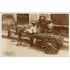Vendedor de frutas, Santiago de Cuba: Fruit seller, Santiago de